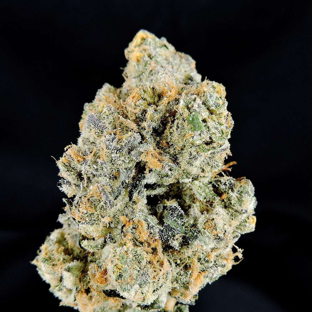 platinum girl scout cookies   medithrive   medical