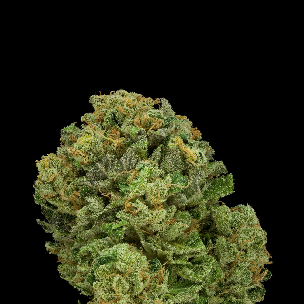 Diablo one of best Cannabis strains to induce hunger